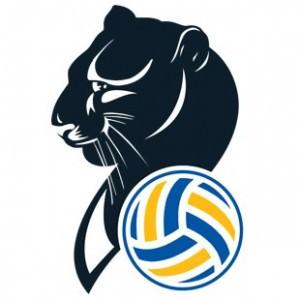 imoco-volley-conegliano-logo-300x300